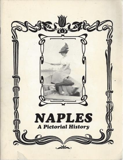 Naples : its history in words and pictures, 1784-1987, Stanley Poe