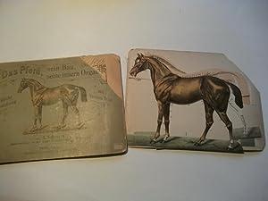 Das Pferd, sein Bau, seine innern Organe. Bildliche Darstellung mit kurzem Text.: Schwarz, A.