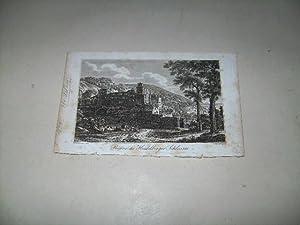 Heidelberg. Ruine des Schlosses.