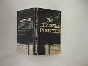The Existential Imagination: Karl, Frederick R.