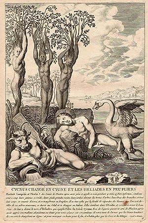 Transformación de Cigneo y de las helíades: Grabador: Diepenbeeck, Abraham