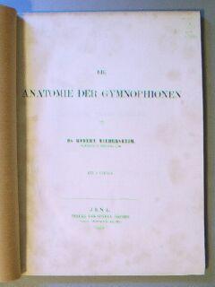 Anatomie Der Gymnophionen: Wiedersheim, Robert