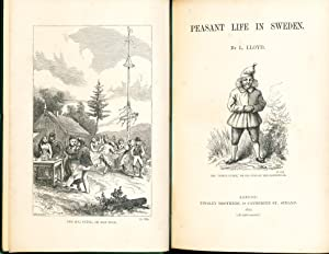 Peasant Life in Sweden