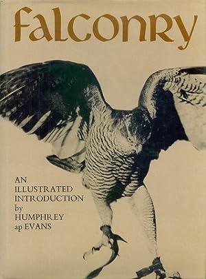 FALCONRY. By Humphrey ap Evans.: Evans (Humphrey ap).
