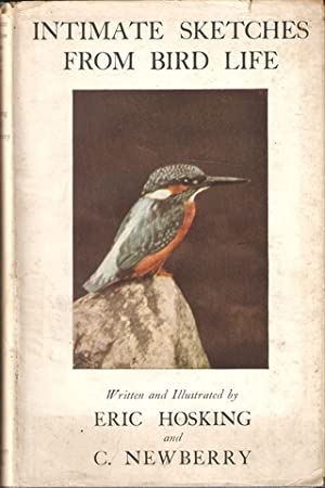 INTIMATE SKETCHES FROM BIRD LIFE. Written and: Hosking (Eric J.)