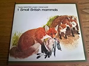 Small British Mammals (Young Researchers Project: Animal World 1)