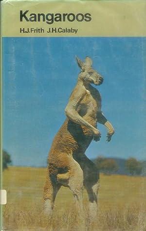 Kangaroos: Frith, H. J.