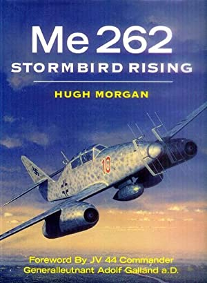 Me 262; Stormbird Rising: Morgan, Hugh