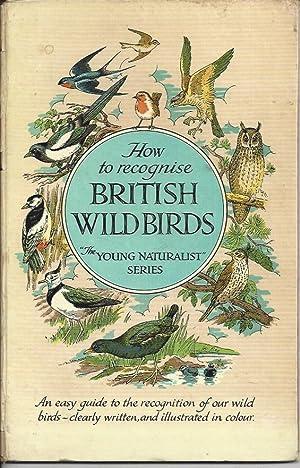 How to Recognise British Wild Birds: Pochin, Eric