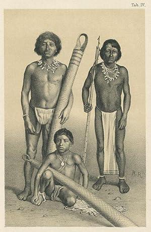 Westindische skizzen. - Reise-erinnerungen.: MARTIN K.