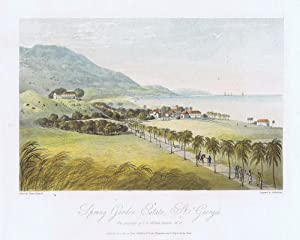 Spring Garden Estate, St Georges. - The property of I.R. Grosett Esquire, M.P.: HAKEWILL J.