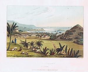 Port Maria, St Marys.: HAKEWILL J.