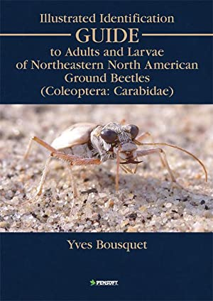 Illustrated Identification Guide to Adults and Larvae: Yves Bousquet