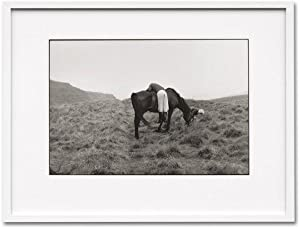 Linda McCartney, Life in Photographs. Art Edition: McCartney, Paul; Linda