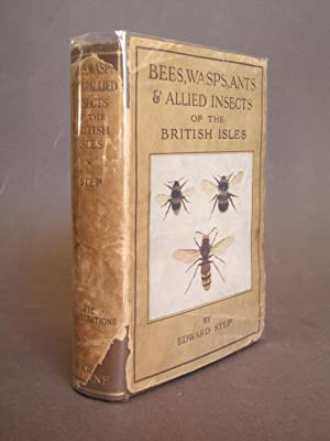 Bees, Wasps, Ants & Allied Insects of the British Isles