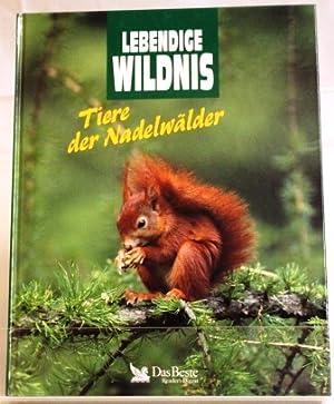 Tiere der Nadelwälder