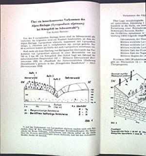 Über ein bemerkenswertes Vorkommen des Alpen-Bärlapps (Lycopodium: Benzing, Alfred: