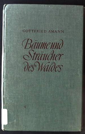 Bäume und Sträucher des Waldes, Taschenbuch: Amann, Gottfried: