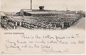 PHOTO-POSTCARD SHOWING HUNDREDS OF BALES OF COTTON: Indian Territory