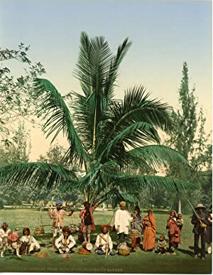 Bombay. Univertity Palm tree with group of Jugglers.