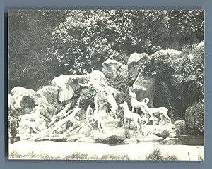 Italia, Reggia di Caserta: Photographie originale /