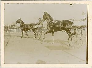 France, Course de chevaux attelés: Photographie originale /