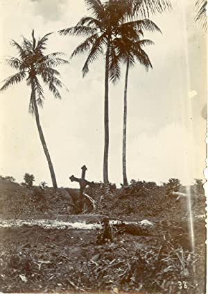 Micronesia, At Ponape (Pohnpei), German Cemetery