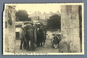 India, Jaipur (????? ?????), Fort d'Amber. Au: Photographie originale /