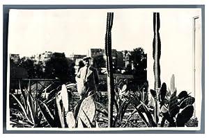 France, Paris, Exposition Universelle de 1937. Pavillon: Photographie originale /
