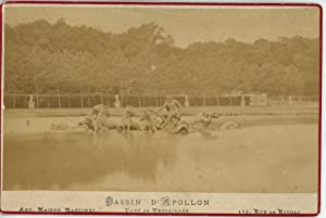 France Versailles Le Bassin D'Apollon