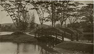 Malaisie, wood bridge