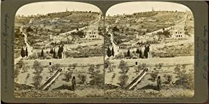 STEREO Palestine, Gethsémani, the Garden and Russian Church on Mt of Olives