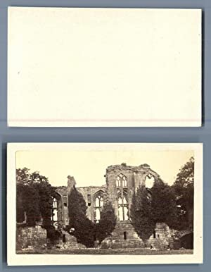 UK, Ruins of the Dudley Castle