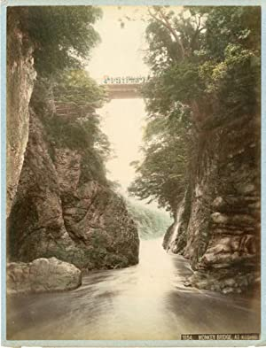 Japon, Monkey Bridge at Koschio