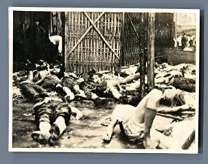 Second Sino Japanese War. Chinese civilian victims