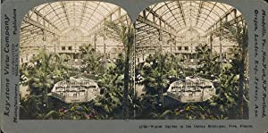 STEREO, France, Nice, casino municipal, le jardin d'hiver