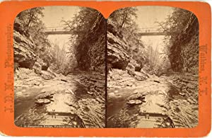 STEREO, J.D. Hope, États-Unis, Suspension Bridge, Watkins Glen N.Y., vintage albumen print