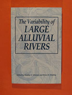 The Variability of Large Alluvial Rivers