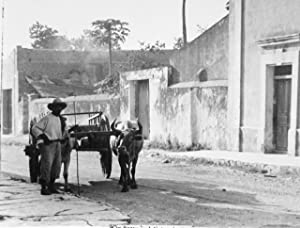 Album of Mexican photographs, ca. 1930: Anonymous photographer