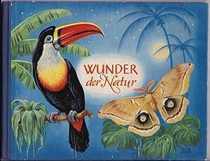 Wunder der Natur. Ein pädagogisches Bilderbuch.: Sorge, Siegfried und Herbert Schreier: