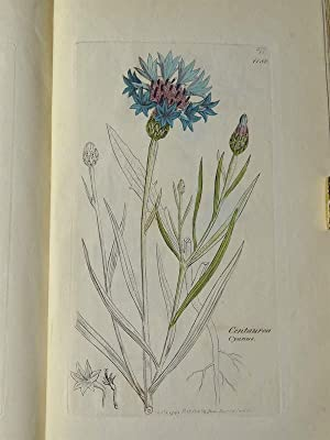 English Botany; or Coloured Figures of British Plants, with their essential characters, synonyms, ...