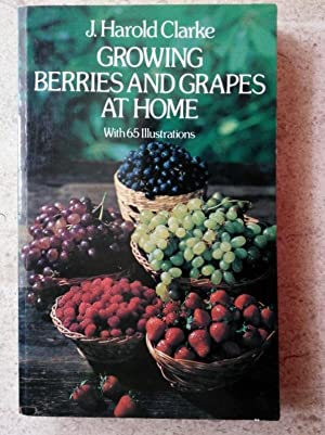 Growing Berries and Grapes at Home