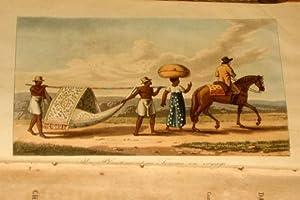 Voyages dans la partie Septentrionale du Bresil: Koster Henry