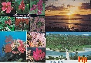 Coral Flowers of Fiji Sunset 4x Fijian