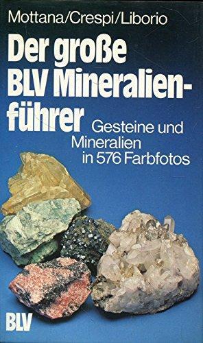 Der grosse BLV-Mineralienführer : Gesteine und Mineralien