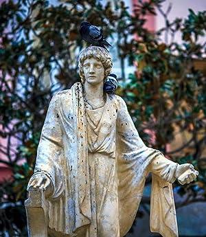 L. Junius Moderatus Columelia Of Husbandry in: Lucius Junius Moderatus