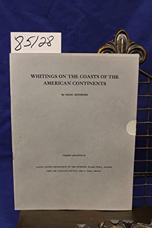 WHITINGS ON THE COASTS OF THE AMERICAN CONTINENTS: Ginsburg, Isaac
