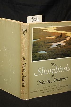 The Shorebirds of North America: Stout, Gardner D. & Matthiessen, Pete