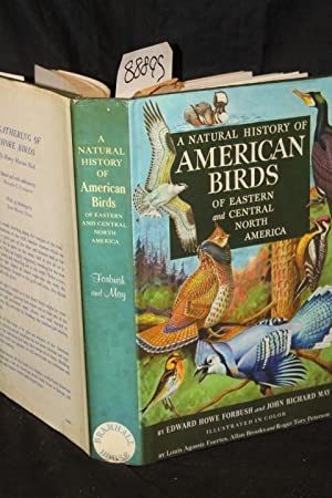 A Natural History of American Birds of Eastern and Central North America: Forebush, Edward Howe, ...