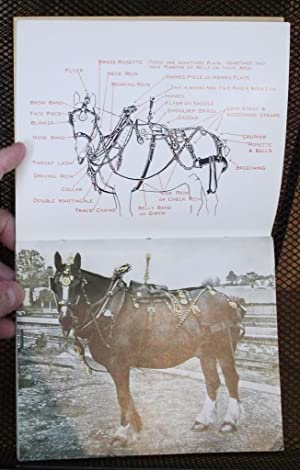 All About Horse Brasses: With additional illustration and key of Horse in Ornamented Harness: ...